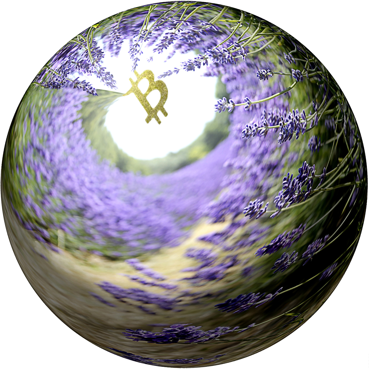 Desktop  2 reduced bitcoin lavender globe